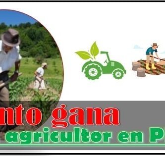 Cuánto gana un agricultor en Peru